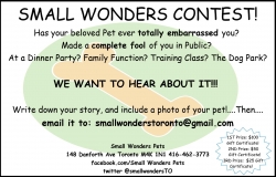 Changes & Contest at Small Wonders